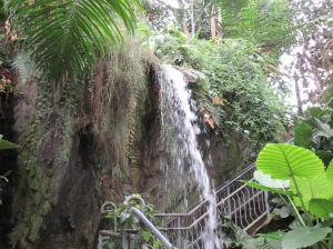 Waterfall inside the Myriad Gardens Tropical Conservatory